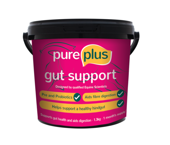 Pure Feed - Gut Support 1.3kg