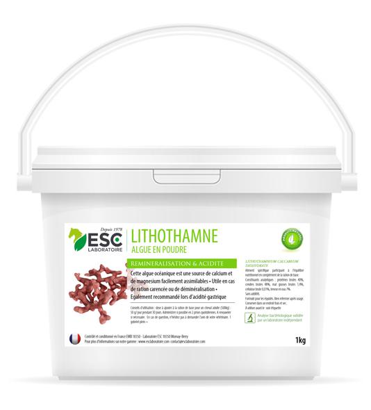 Lithothamne – Reminéralisation et acidité gastrique cheval